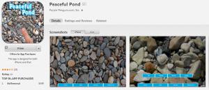 peaceful_pond